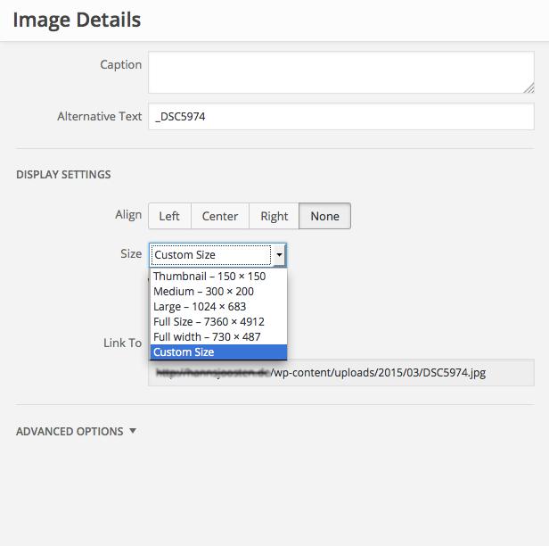 Wordpress image details