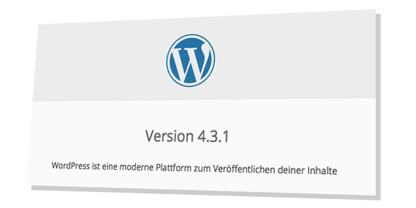How to check my WordPress Version online