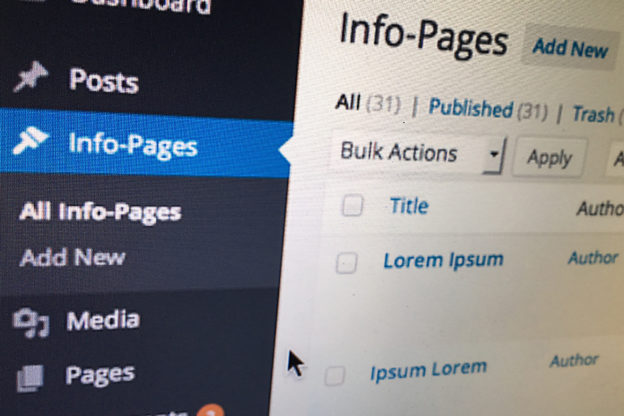 WordPress CMS: Custom Content / Types